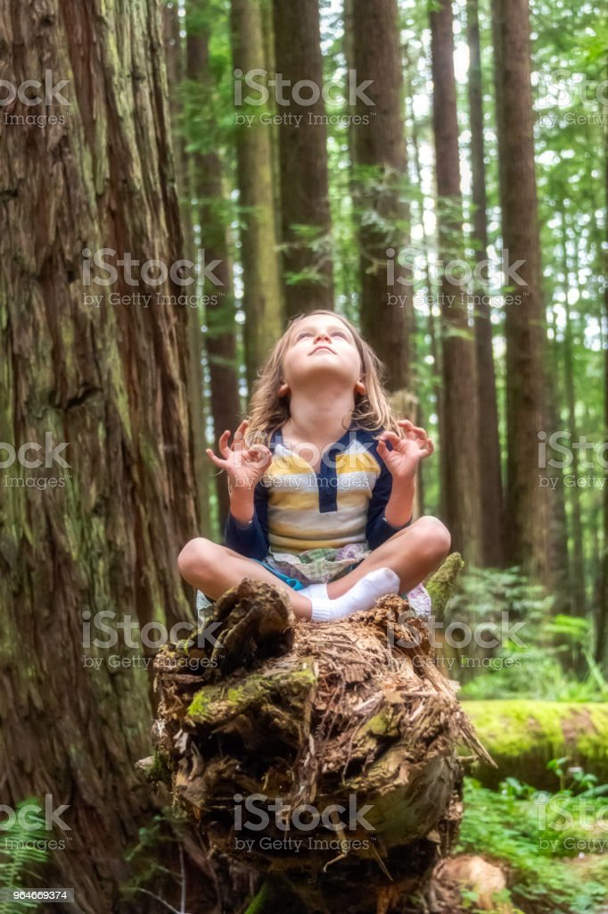Little girl meditating at the woods royalty-free stock photo