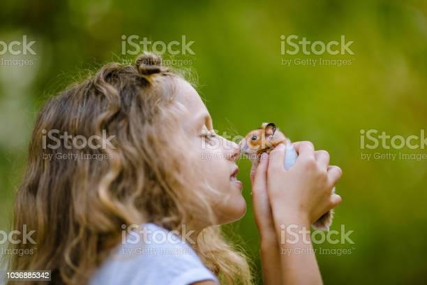 Little girl nose rubbing with a dwarf hamster picture id1036885342?b=1&k=6&m=1036885342&s=612x612&h=nl4hbwcr3quu4k2 dhvtul2ckatjmmvwg9ejrbguz6q=