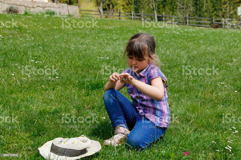 Little girl picking daisies stock photo