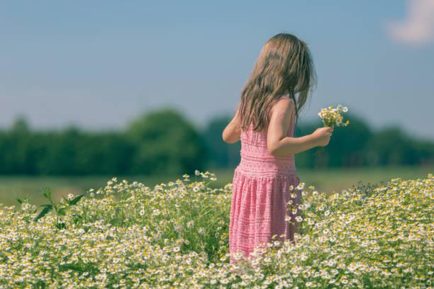 Kleine Mädchen pflücken Blumen – Foto