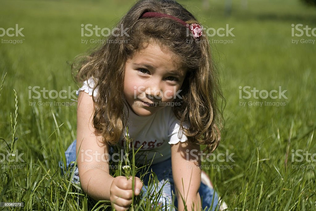 little girl picking some grass in the field stock photo