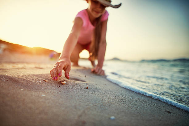 little girl picking up sea shells at the beach - little girl picking up sea shells at the beach stock pictures, royalty-free photos & images