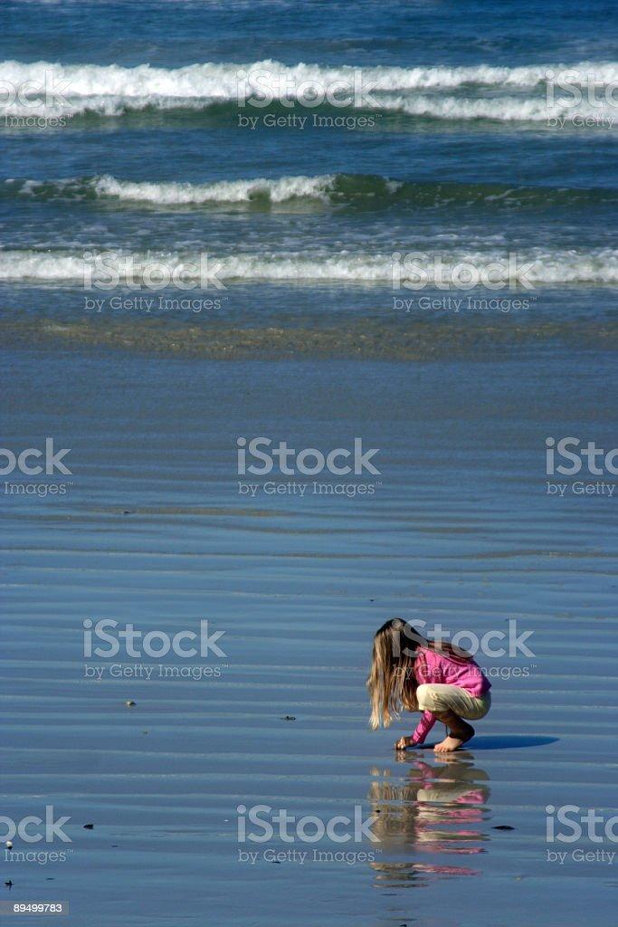 Bambina sollevare conchiglie di mare foto stock royalty-free