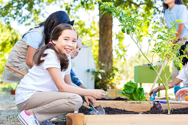 rapariga plantação produtos hortícolas com desde sempre presenciei isto na exploração viagem de campo - teacher school solo imagens e fotografias de stock