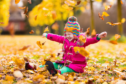 Little girl playing in autumn park with golden maple leaves
