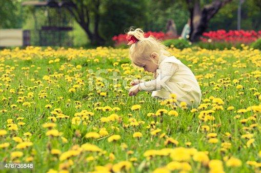 istock Little girl playing in the dandelion field. 476736848
