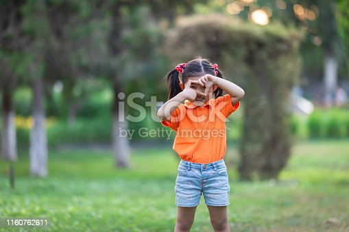 istock Little girl playing Photography games 1160762611