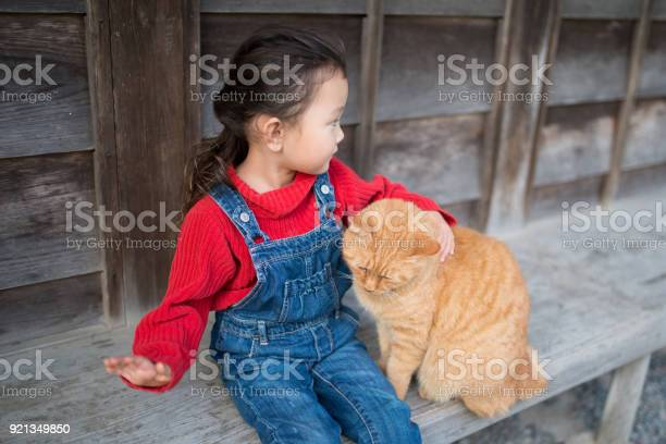 Little girl playing with a cat picture id921349850?b=1&k=6&m=921349850&s=612x612&h= kzxxe3ohpsz7dvvch5x0ybw9pxvuvupkjccvdn1dsy=
