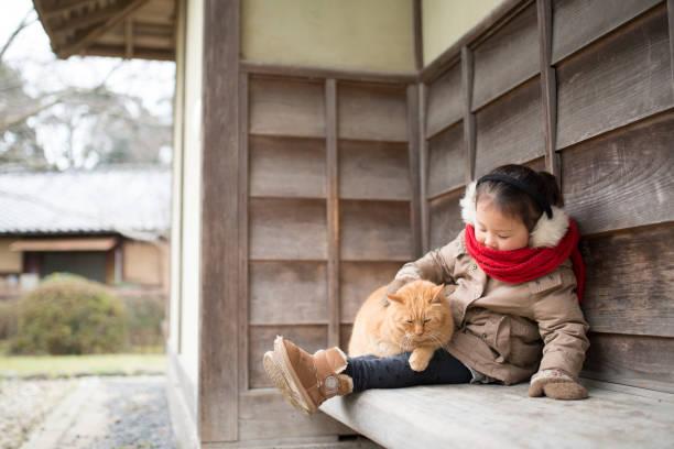 kleines mädchen spielt mit einer katze - lammfellstiefel stock-fotos und bilder