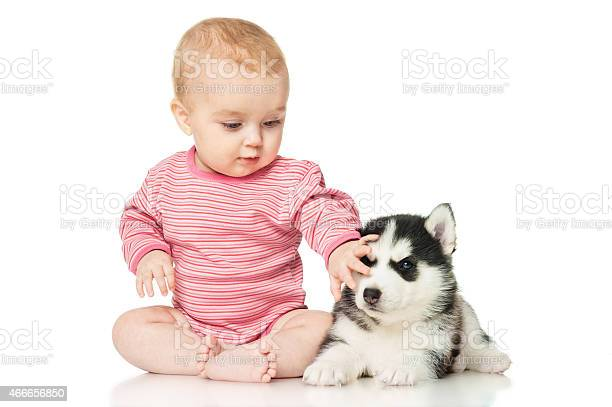 Little girl playing with a puppy picture id466656850?b=1&k=6&m=466656850&s=612x612&h=h7zqemnswuezleaid4mnk9rss4xkwc8qfk wsjz8ljk=