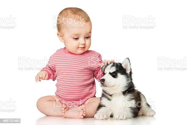 Little girl playing with a puppy picture id466732460?b=1&k=6&m=466732460&s=612x612&h=jaayznewj1dw7s bqarfqpsdgnuavcky8ceksrygywe=