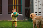 Little girl playing with the ball with the golden retriever in the garden