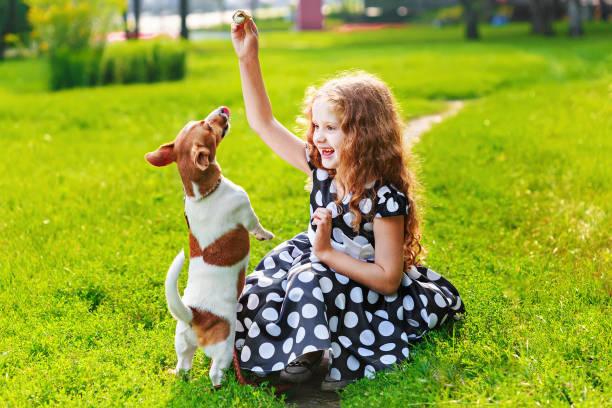 Kleine Mädchen spielen mit ihrem Hund jack Russell in Park. – Foto