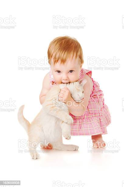 Little girl playing with kitten picture id163659938?b=1&k=6&m=163659938&s=612x612&h=ya 0dnkmvnnsfmlg4ea3 avnm3yxowa4ysq dmgugtg=