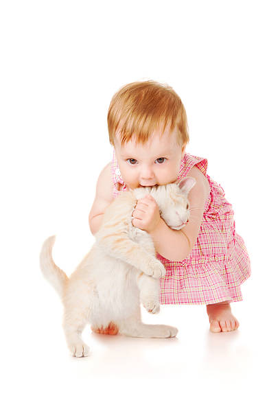 Little girl playing with kitten picture id163659938?b=1&k=6&m=163659938&s=612x612&w=0&h=bg3qwjke6dvengdhrzi5fbcbp72q6 yuwoaw lsjlli=