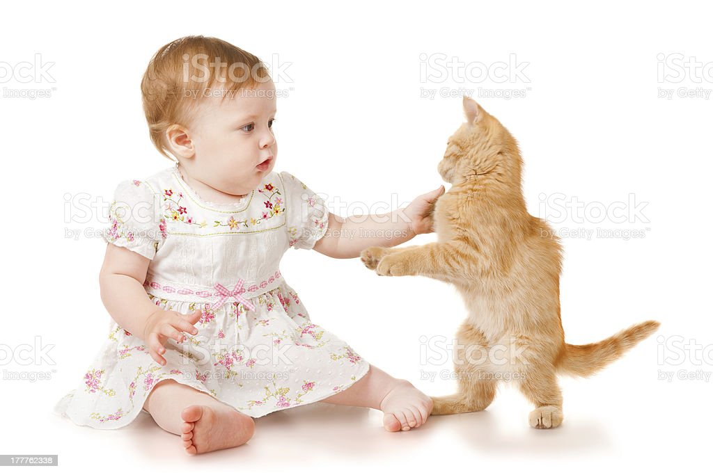 Little girl playing with kitten royalty-free stock photo