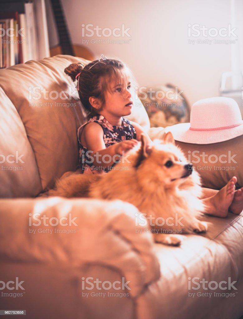 Menina a brincar com animais de estimação - Foto de stock de Abraçar royalty-free
