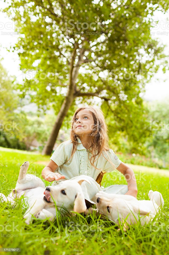 Little Girl Playing With Puppies royalty-free stock photo