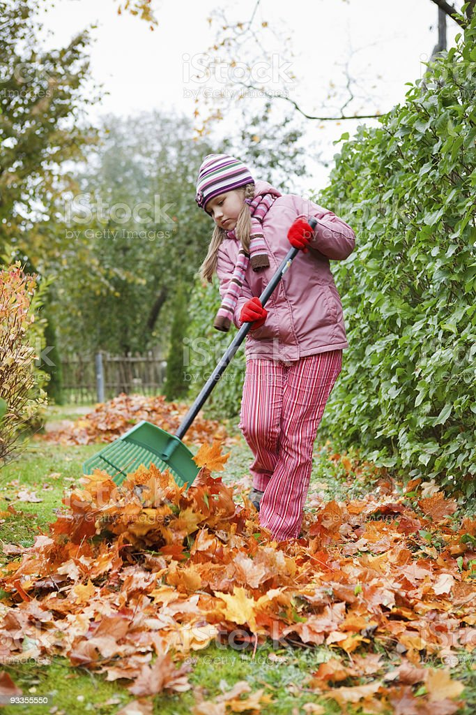 Little girl rake autumn leaves in garden royalty-free stock photo