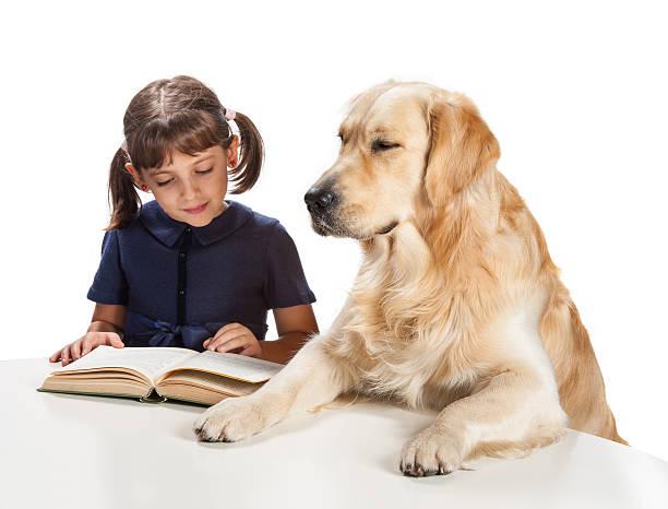 Kleines Mädchen lesen mit ihrer golden retriever – Foto