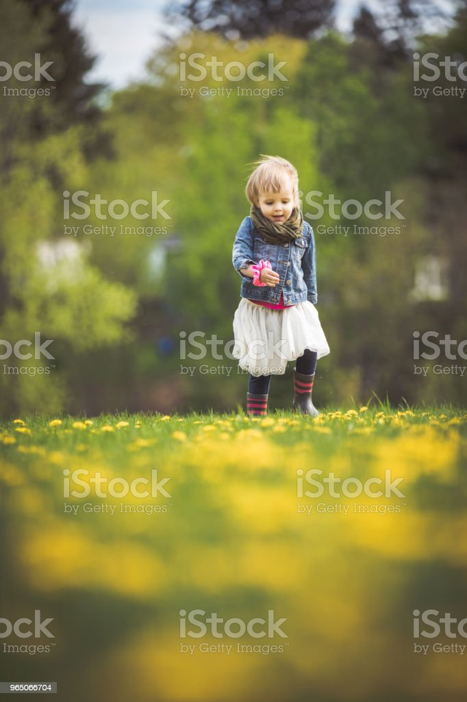 Little girl running and playing in the flowers royalty-free stock photo