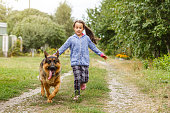 little girl shepherd dog