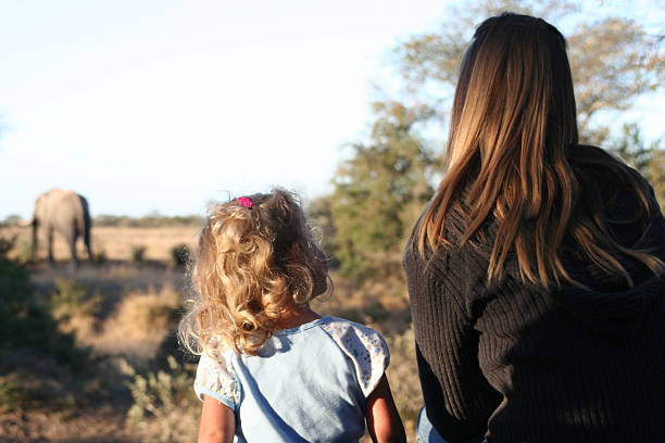 a little girl sitting next to a woman looking at elephants - safari animals stock photos and pictures