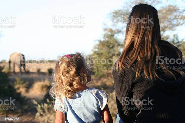 A Little Girl Sitting Next To A Woman Looking At Elephants Stock Photo - Download Image Now