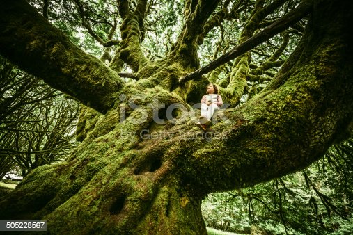 Little Girl Sitting on Centennial moss covered Tree at Olympic National Park in Washington State. USA.