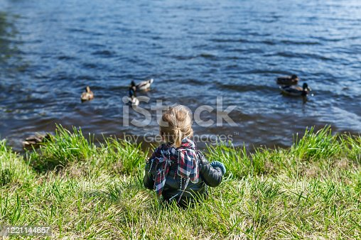 istock Little girl sitting on grass and looking at lake with floating ducks. Rear view 1221144657