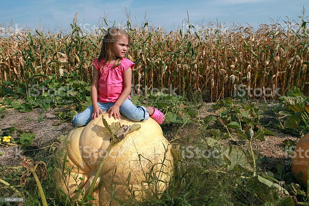 Little Girl Sitting on Large Pumpkin stock photo
