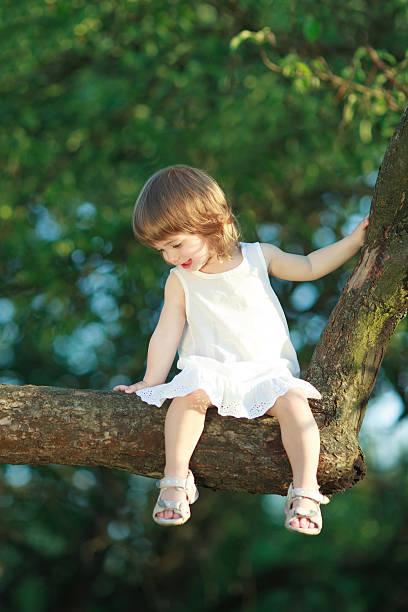 kleines mädchen sitzt auf dem baum - drees und sommer stock-fotos und bilder