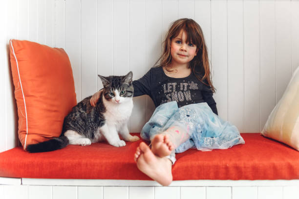 Little girl sitting with her cat stock photo