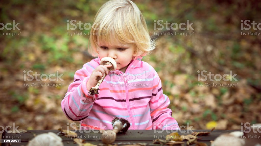 Little girl smelling parasol mushrooms stock photo