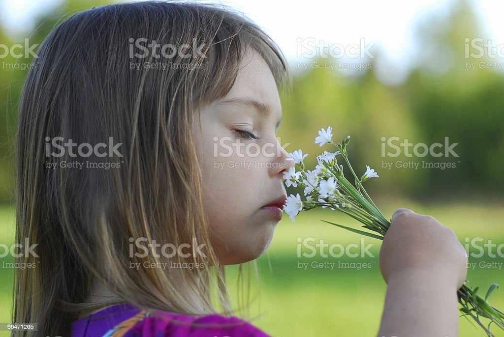 Little girl smells flowers royalty-free stock photo