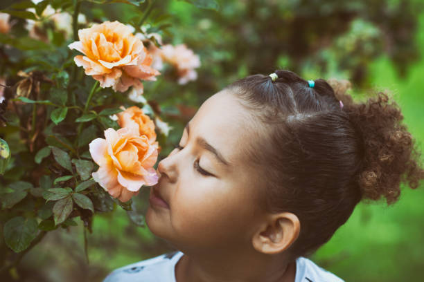 Little girl sniffing a rose picture id1059281522?b=1&k=6&m=1059281522&s=612x612&w=0&h=jbh7fk o owperaef8rjpzgcypiano mihx5etj oe8=