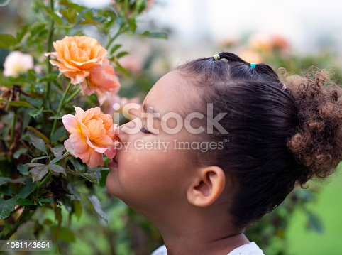 Close up portrait of little girl with closed eyes sniffing the pastel orange rose. The rose growing on a bush in the garden.