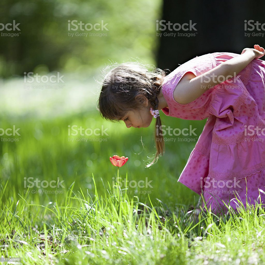 Little girl sniffing flower royalty-free stock photo