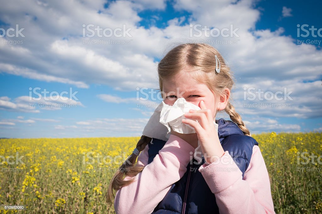 Little girl in yellow canola field blowing her nose and suffering...
