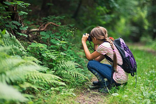 kleines mädchen nimmt bilder im wald - fotografieren stock-fotos und bilder