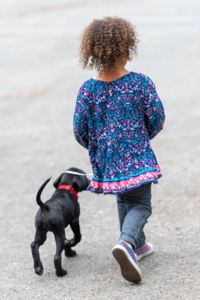 Little girl walking her dog picture id1159668257?b=1&k=6&m=1159668257&s=612x612&w=0&h=8vvmm85o yu sg5dkwwksjsqng00bl wv6u5hopblku=