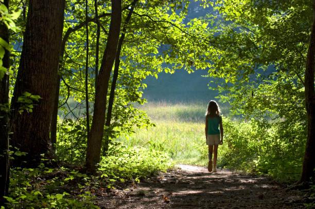 Kleines Mädchen zu Fuß durch den Rand der Wald in Field – Foto