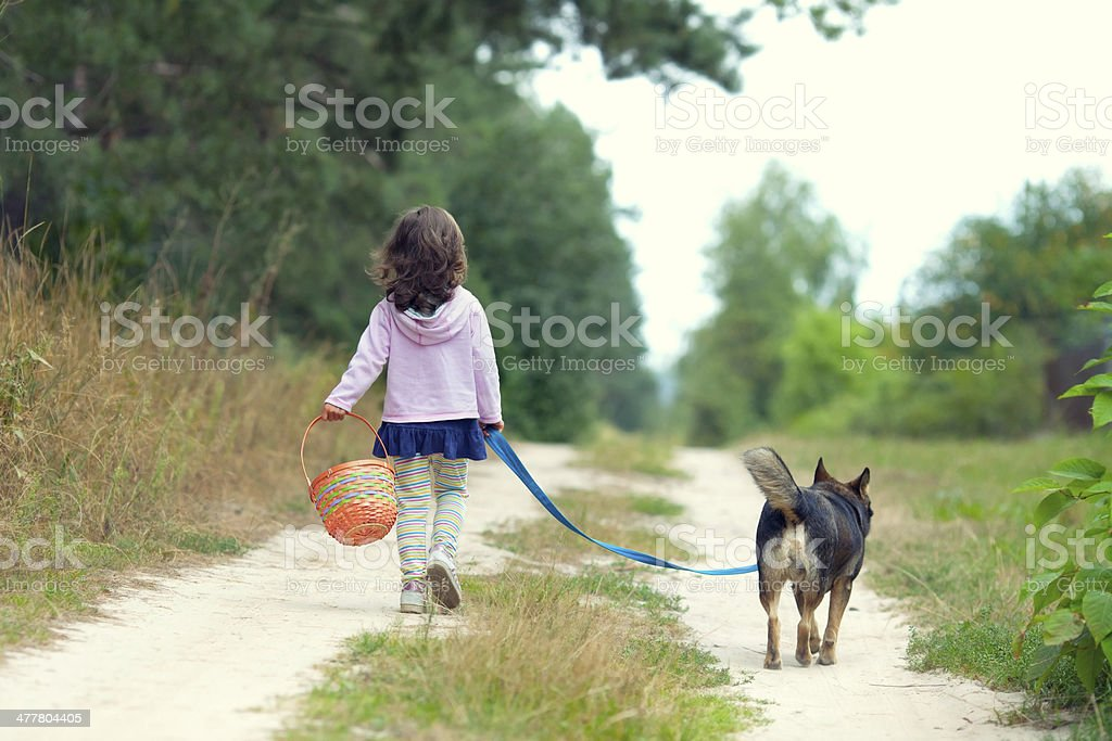 Little girl walking with dog royalty-free stock photo