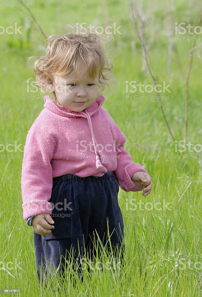 little girl walks on the field royalty-free stock photo