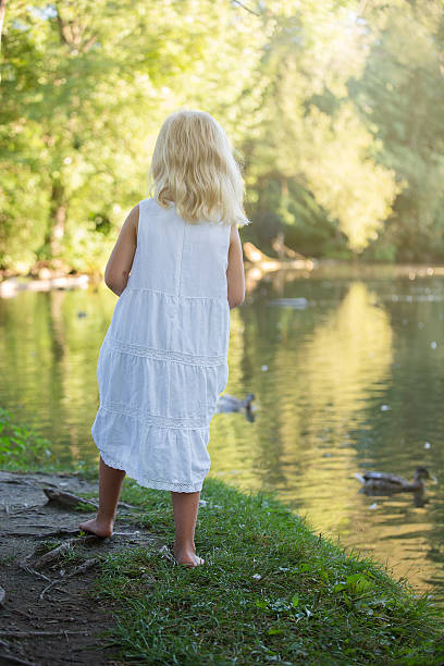 Little girl watching ducks in a pond stock photo