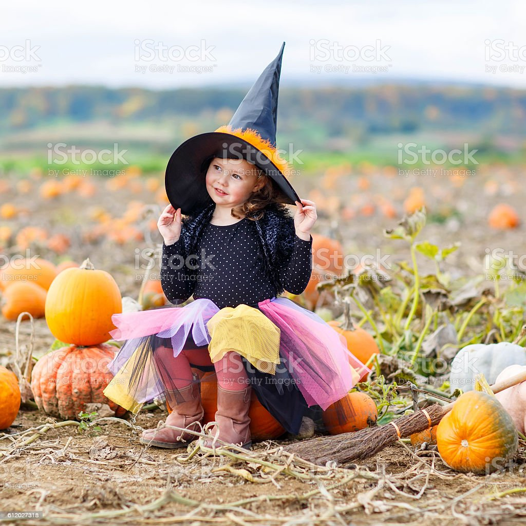 little girl wearing halloween witch costume on pumpkin patch royalty-free stock photo  sc 1 st  iStock & Little Girl Wearing Halloween Witch Costume On Pumpkin Patch Stock ...