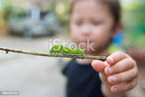 istock Little girl who found a caterpillar 930253182