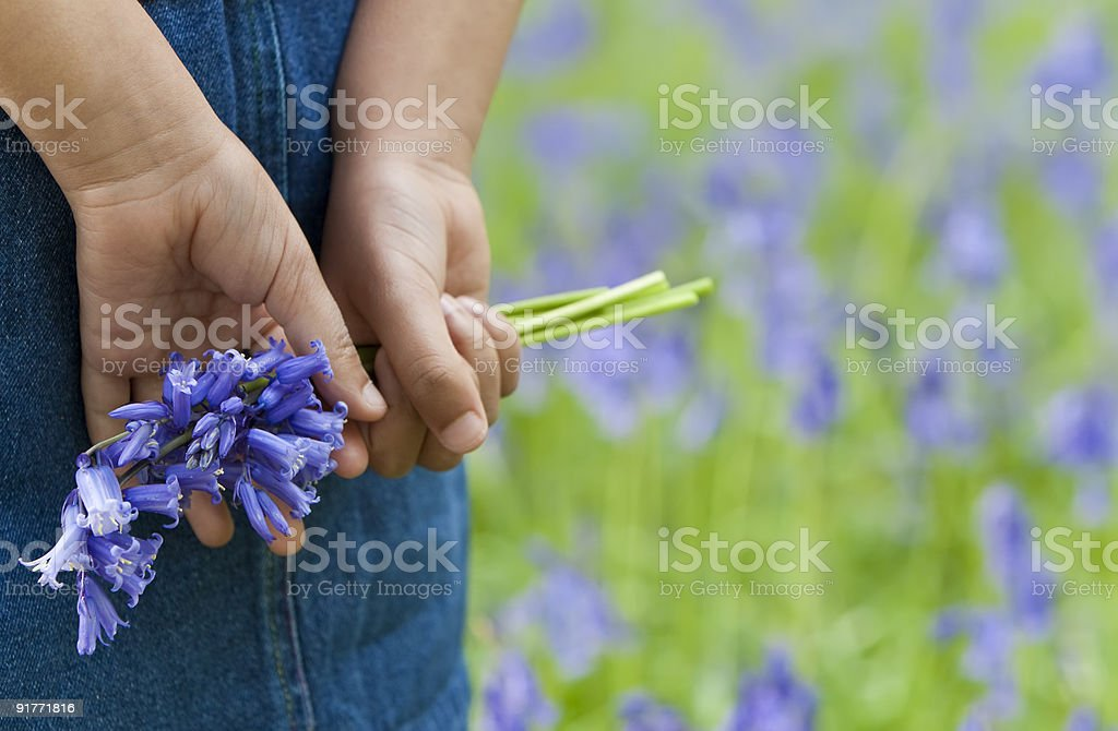 Little Girl With A Bunch of Bluebells stock photo
