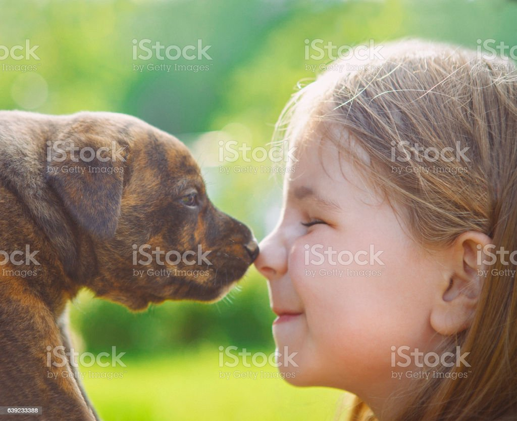 Little girl with a puppy stock photo