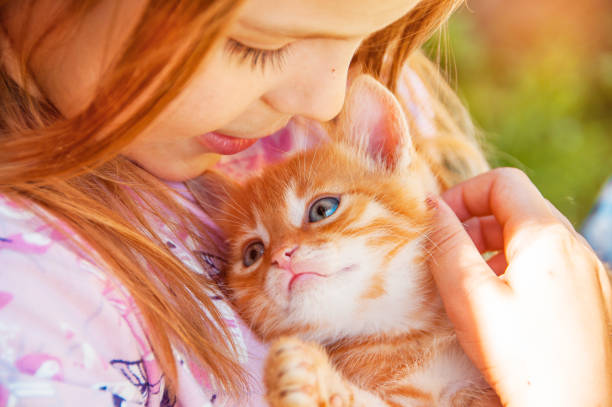 Little girl with a red kitten in hands close up bestfriends of with picture id843424096?b=1&k=6&m=843424096&s=612x612&w=0&h=r6vkfrv0 mlnmezep3bo6c3 rypz8jpeftwliktyzlw=